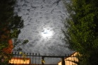 Luna en crecimiento, tierras castellanas