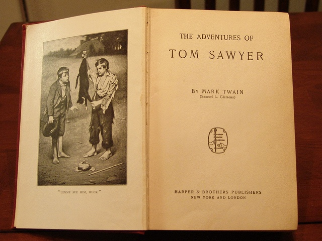 An analysis of the adventures of tom sawyer in the novel the adventures of huckleberry finn by mark