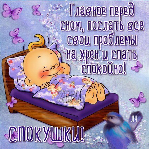 Спокойной ночи картинки с надписью смешные, картинки