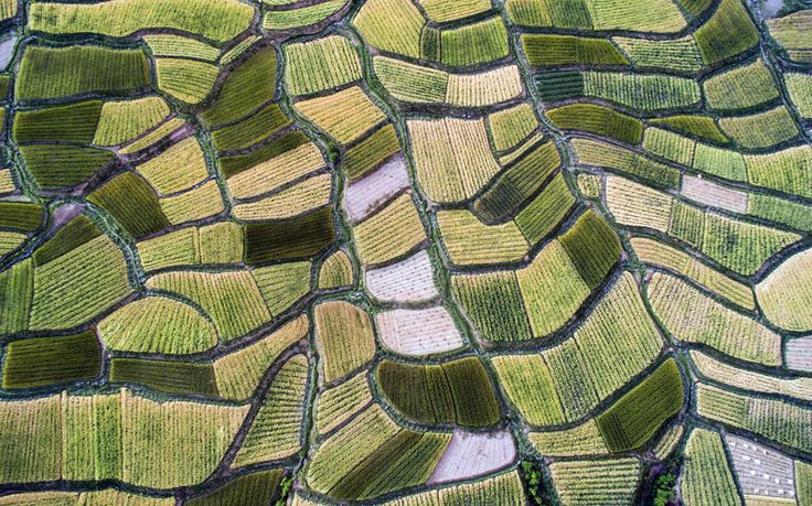 Countryside scenery in Xiangcheng County of southwest China's Sichuan Province