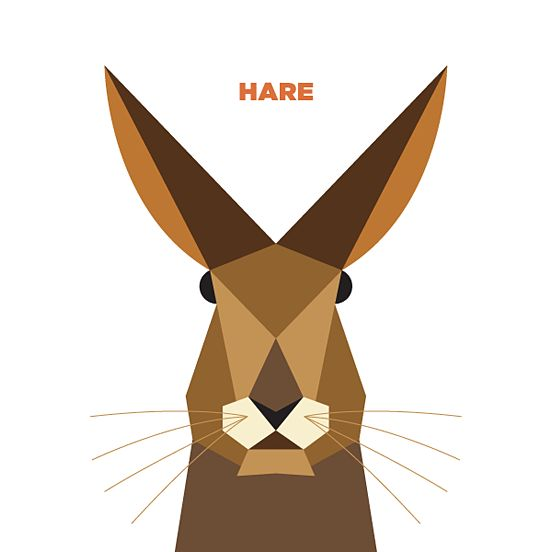 shapes simple animals animal illustrations shape illustration drew graphic geometric inspiration basic 3d illustrator hare drawings 2d vector nagra jag