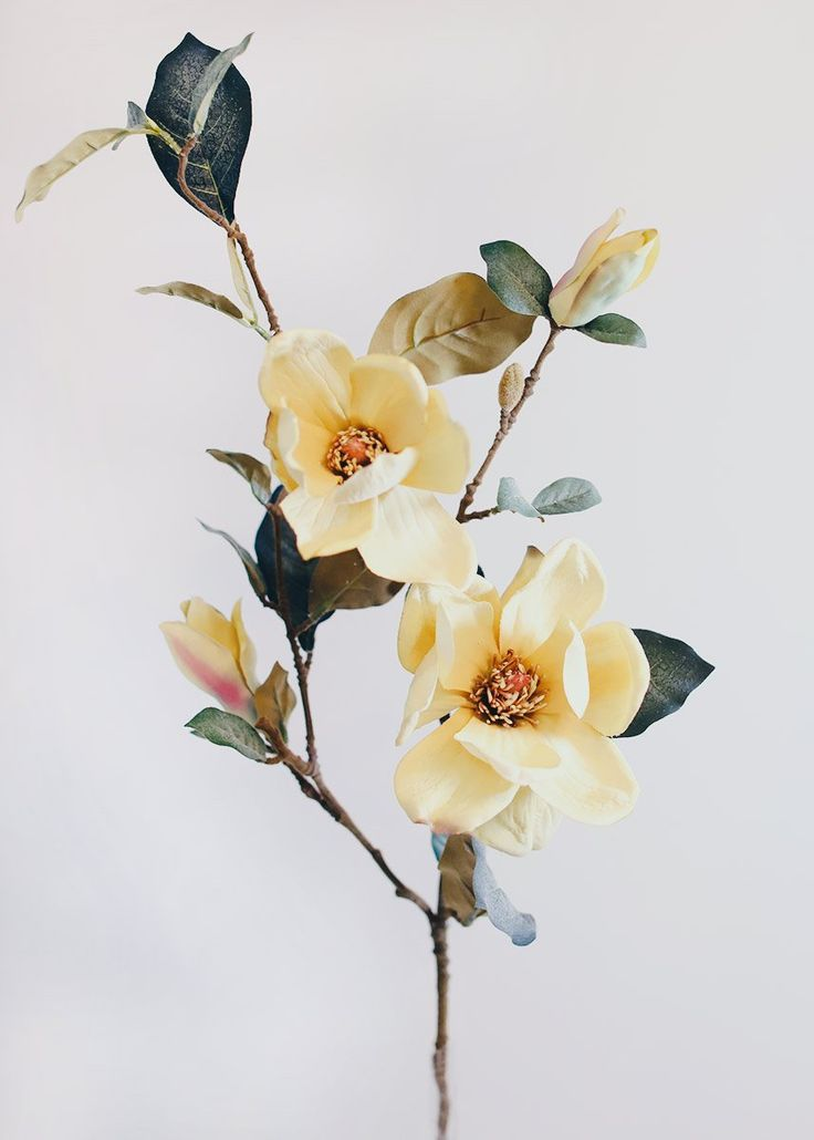 Fake Magnolia Flower Branch in Mustard Yellow