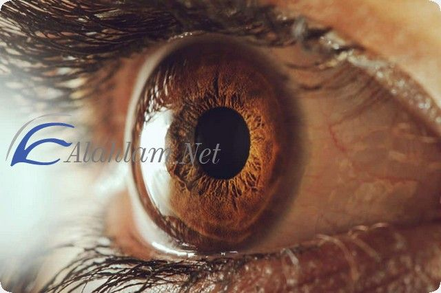 التحصين من العين والحسد
