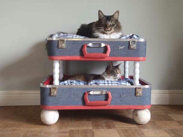 eski valizlerden kedi yatağı