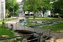 Der Lutterbach am Waldhof in #Bielefeld