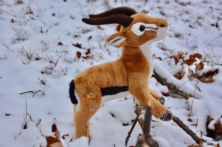 Webkinz Signature Endangered Dama Gazelle Plushy Toy No Code 661371490342 | eBay