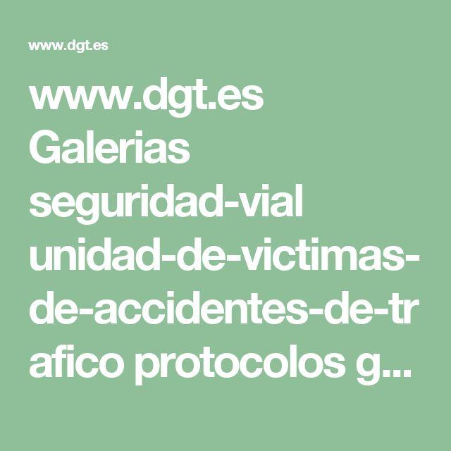 www.dgt.es Galerias seguridad-vial unidad-de-victimas-de-accidentes-de-trafico protocolos guia-duelo-infantil-fmlc.pdf