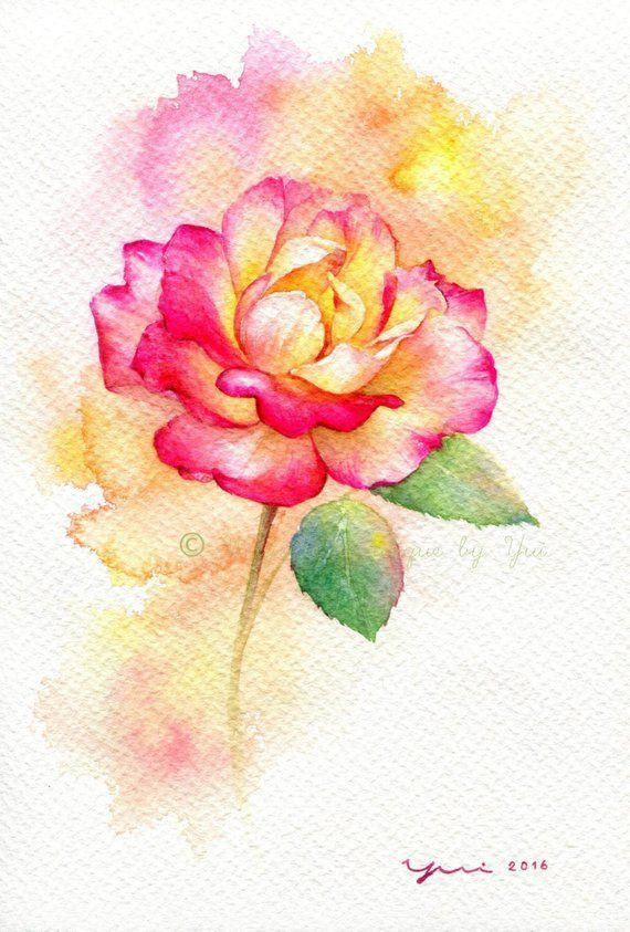 Color Pencil Drawing Ideas Rose Original Watercolor Painting 7 5