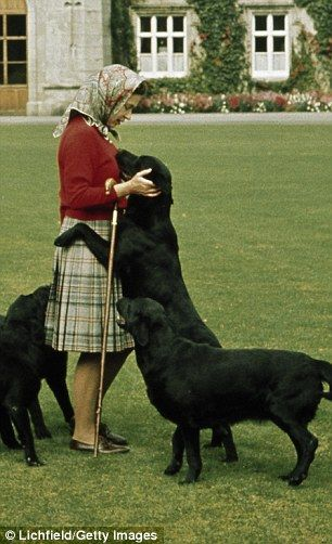 'Private love': The Queen may be well-known as a fan of the corgi, but according to Ben Fo...