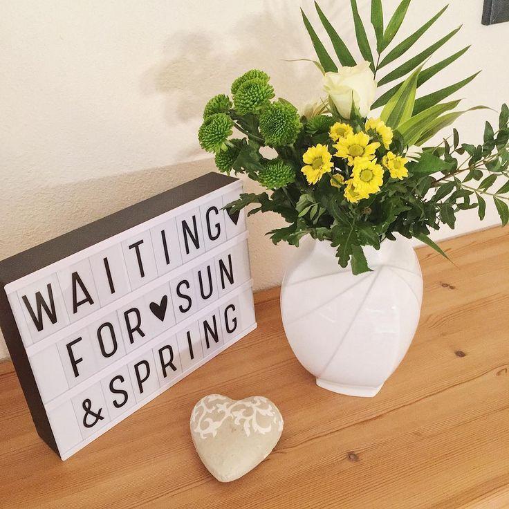 """113 Likes, 6 Comments - rosinchen (@rosinchen9337) on Instagram: """"Ich geh dann mal ein bisschen vom Frühling träumen .... ☀️#longingforspring #desire #itstime…"""""""