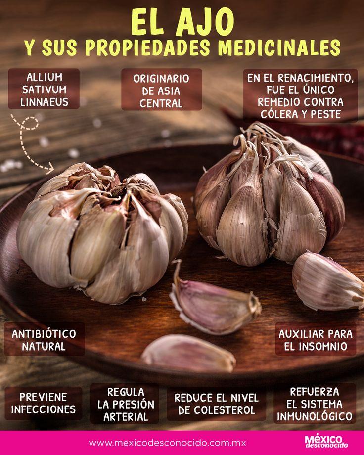 El ajo posee muchas propiedades medicinales, aquí te decimos todas Natural Medicine, Garlic, Healthy Eating, Healthy Recipes, Dishes, Vegetables, Behance, Food, Gastronomia