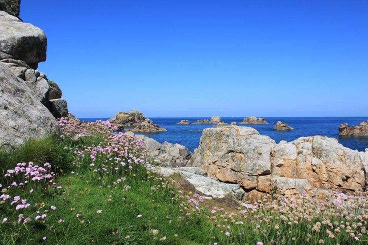 Cote de granit rose, Bretagne