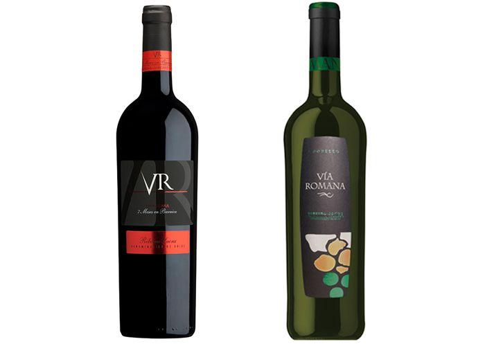 Via Romana Los Mejores Vinos De Anada En La Do Ribeira Sacra