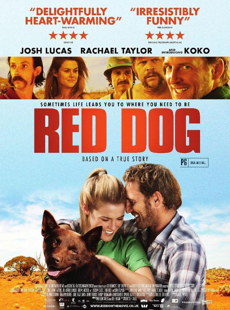 Filme -  Cão Vermelho ( Red Dog ) ✯ ✯ ✯ ✯ ✯