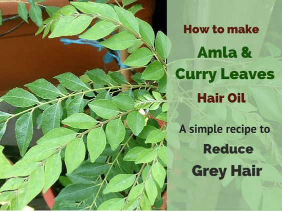 Are looking for ways to Stop Grey Hair? This Amla & Curry Leaves Hair Oil will help prevent and reduce grey hair and make your hair soft, thick & Beautiful.