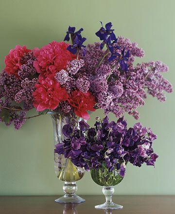Lilacs, Siberian Iris, Peonies, Sweet Peas