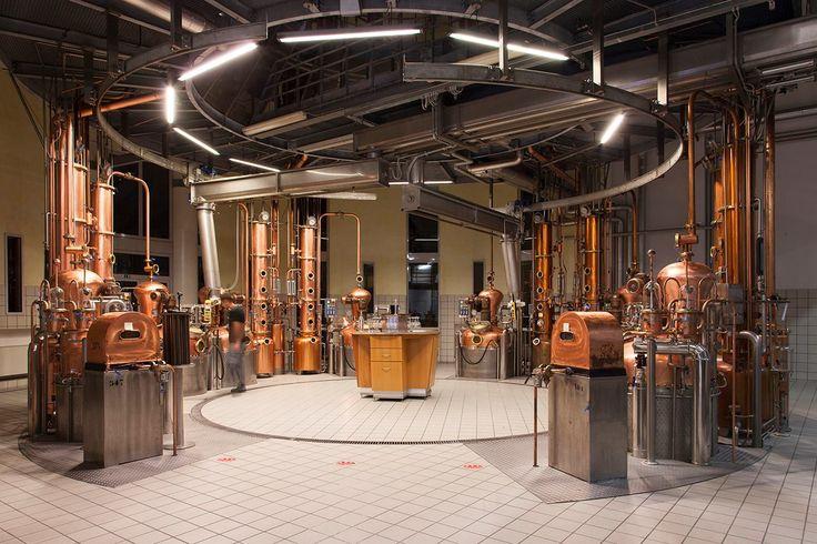Un impianto di distillazione!