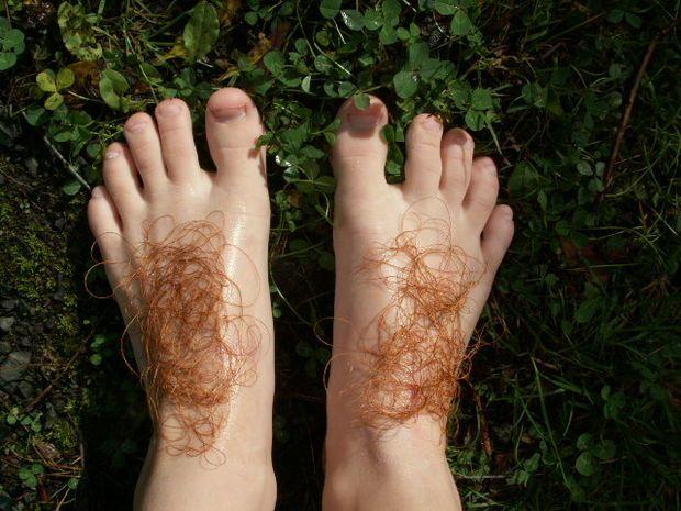 Picture of Hobbit Feet