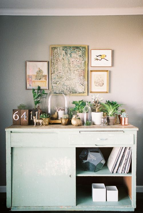 """Sneak Peek: Best of Indoor Plants. """"We call this old kitchen table full of terrariums and potted plants """"The Terrarea"""" and it's one of our cat's favorite places to inspect. They're indoor cats, so it's as close to the call of the wild as they can get."""" From Sneak Peek: Amy & Erich McVey #sneakpeek"""