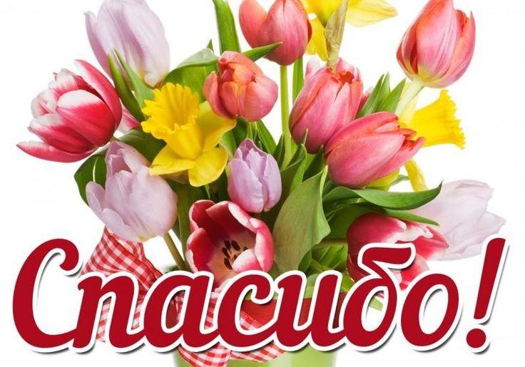 Марта, картинки цветок с надписью спасибо