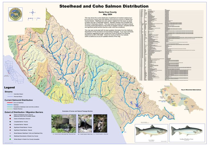 Steelhead and Coho Salmon Distribution Map - Santa Cruz County - Santa Cruz CA • mappery