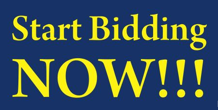 Online antique auction, bidding ends in 2 hours! Shipping available!