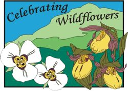 Wildflower & Native Plant Societies Links - A list of links to websites related to Celebrating Wildflowers and organizations that promote preservation, conservation, and knowledge about native plants.
