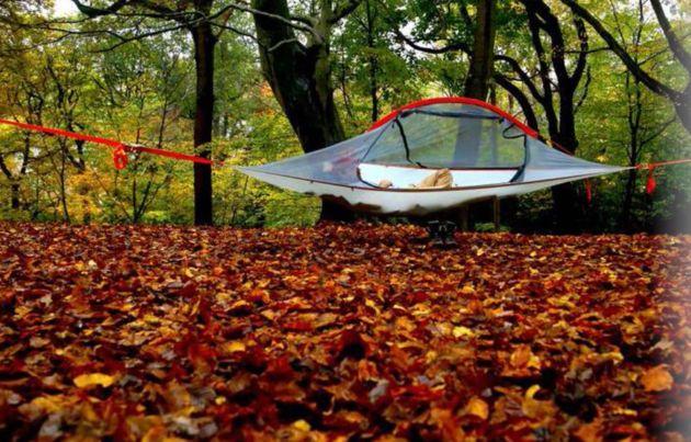 まるで空の上で眠っているみたい。ツリー・テントに泊まろう