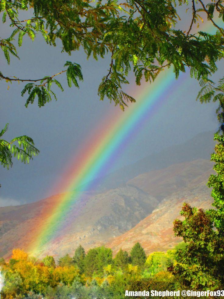Real Rainbows
