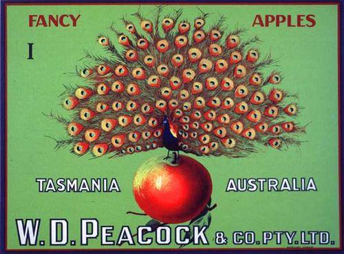 W.D Peacock
