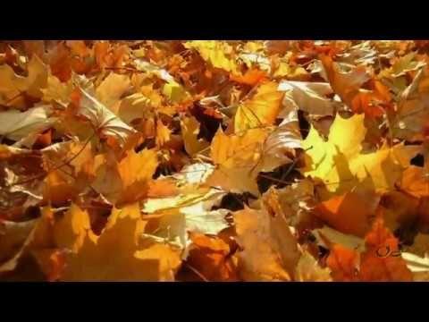 *** October Beauties ***   Adagio -  Samvel Yervinyan