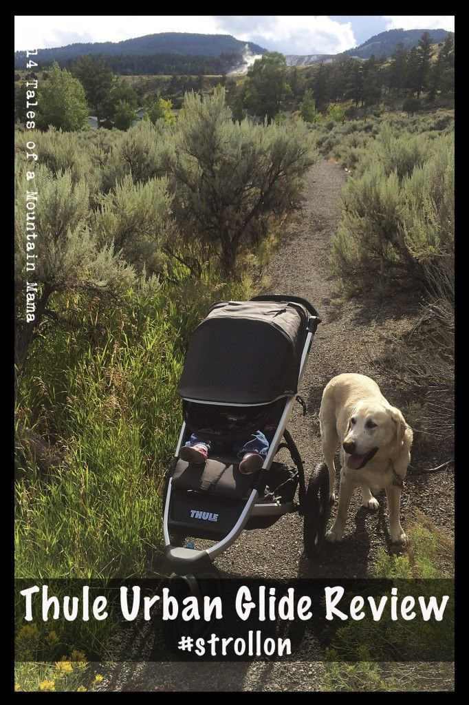 Thule Urban Glide Review | The stroller I want!