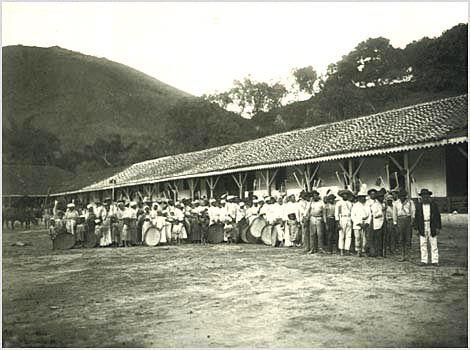 Marc Ferrez - Negros escravos de uma fazenda de café -1885