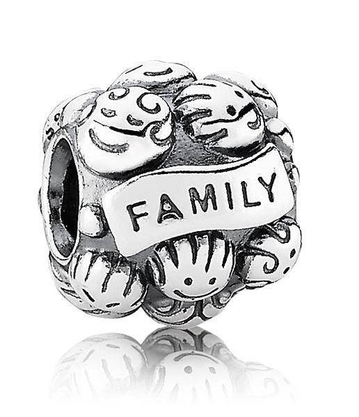 Pandora Family Love Charm 791039 Love this one the kids gave me!