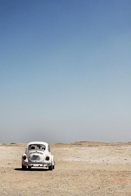 #VW #Beetle