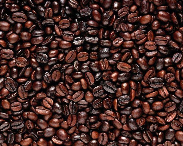 1 Pound  Medium Dark Roasted Vietnamese Robusta Coffee Beans #CarterOne