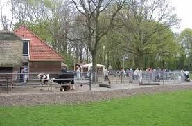 de kinderboerderij gelegen aan de ringdijk