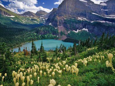 Bear Grass above Grinnell Lake, Many Glacier Valley, Glacier National Park