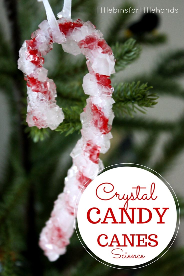 Christmas Science with Crystal Candy Canes Ornament Activity. Also a great Christmas chemistry experiment exploring suspension. Holiday Christmas STEM. Make your own crystals. Grow crystals with preschool, kindergarten and early elementary age kids! Add to your Christmas countdown calendar.