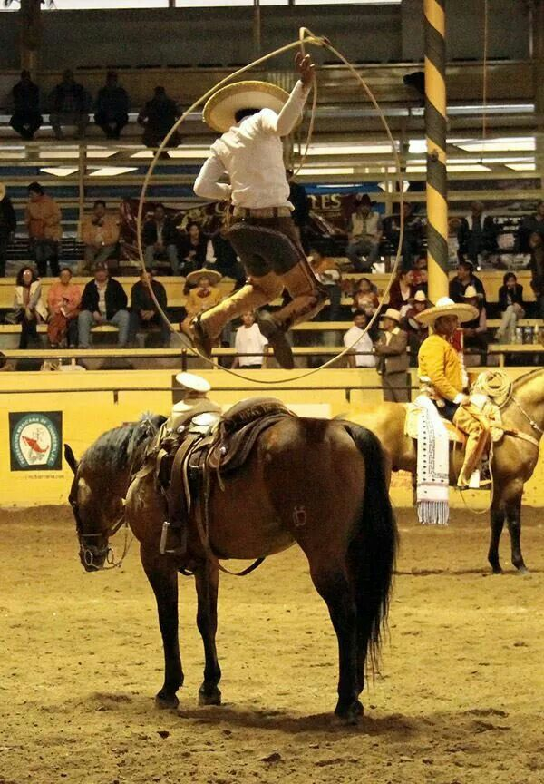214 Best Images About Charreria On Pinterest Saddles