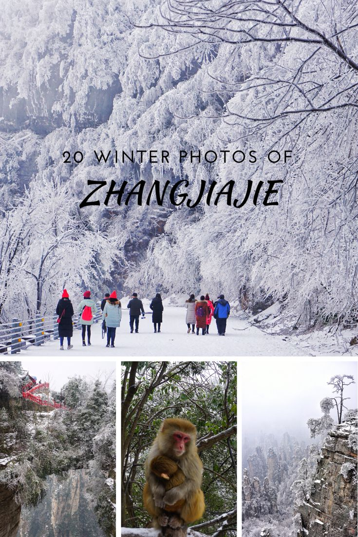 The best winter photos of Zhangjiajie to make you want to go right away!