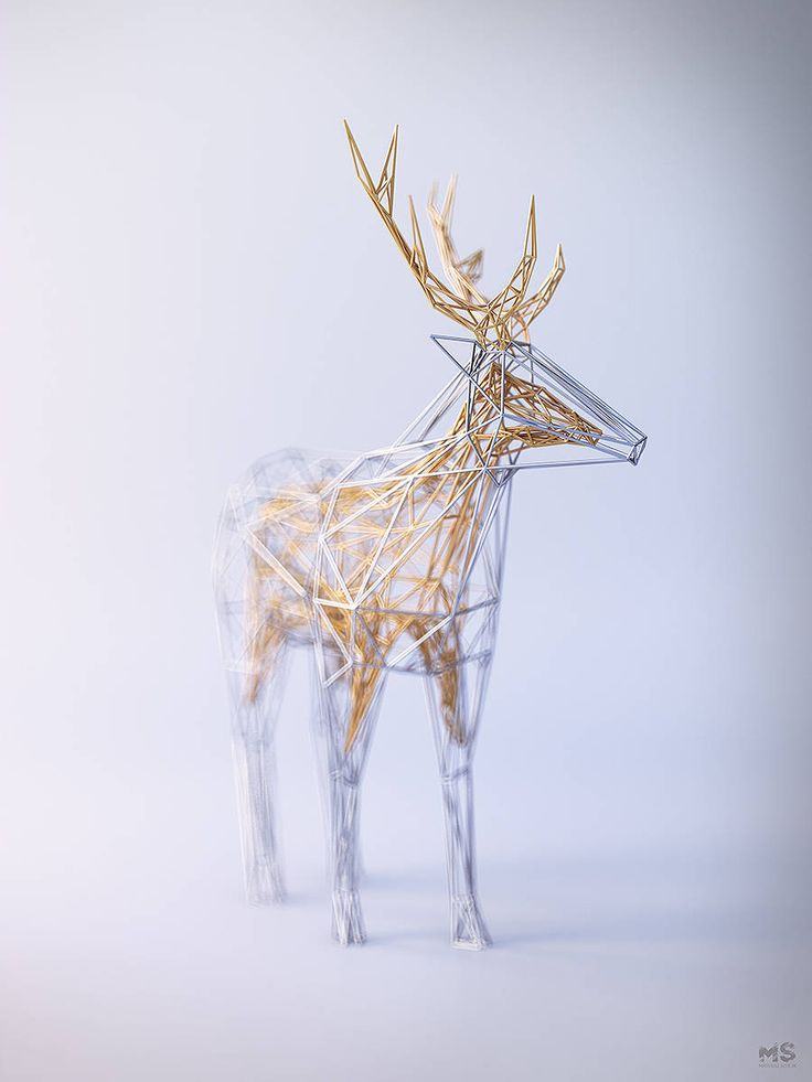 Amazing Animals Sculpted in Wire