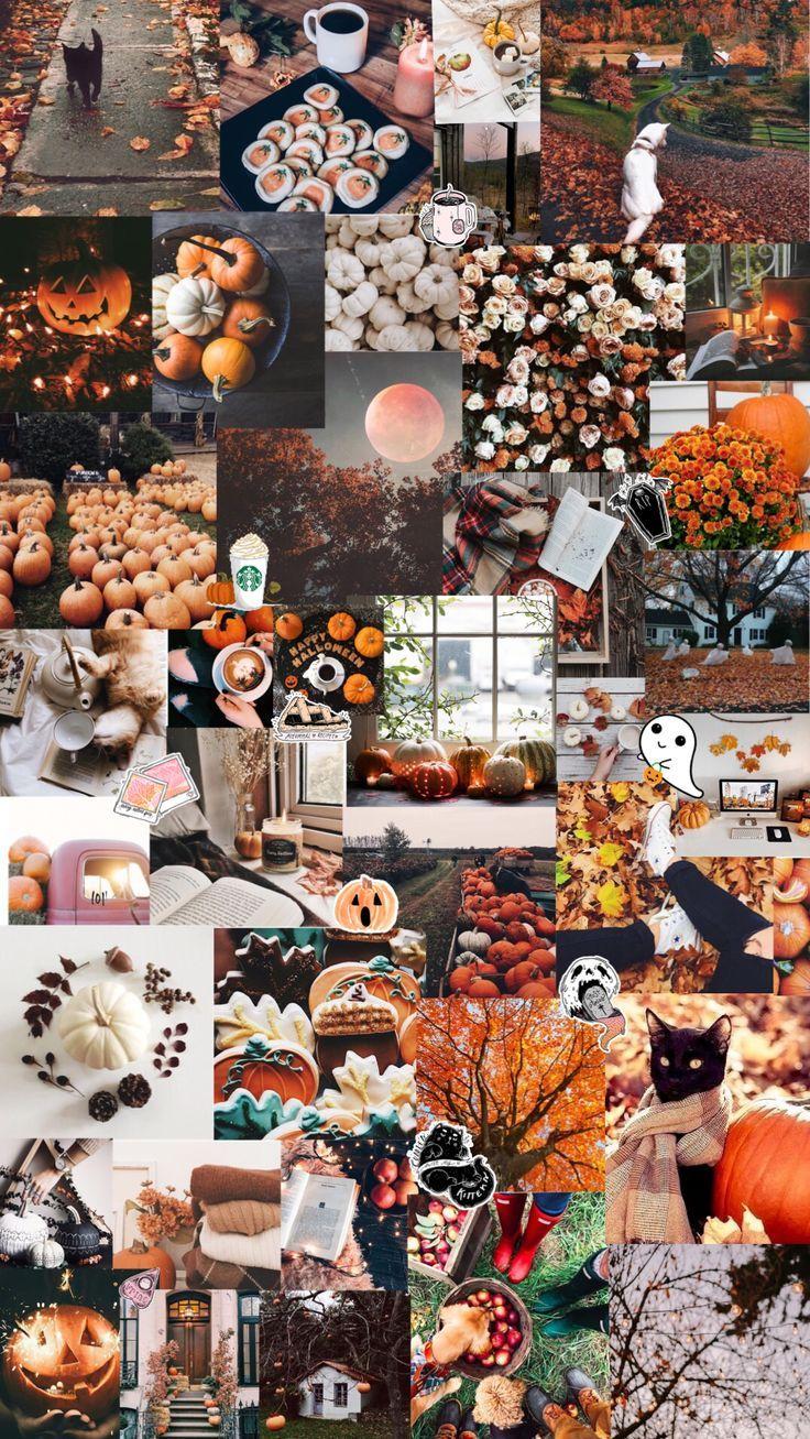 Autumn Halloween Aesthetic Background Halloween Wallpaper