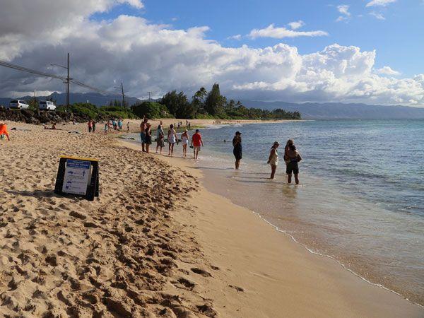 Plan Hawaii vacations with Hawaii Aloha Travel - book hotel and airfare, choose all-inclusive Hawaii vacation packages, or create your own Hawaiian va