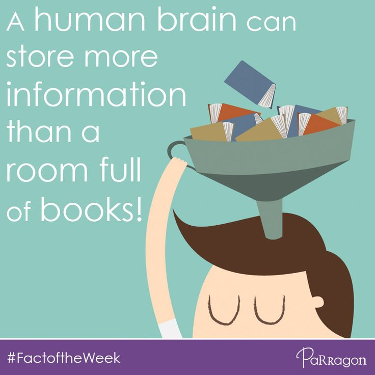 Our #FactoftheWeek is for all you brainiacs! #Randomfact #TriviaThursday