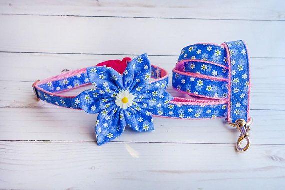 Blue Daisy Flower girl custom small medium puppy floral, dog harness leash set, dog collar leash set, French bulldog, Harness and leash
