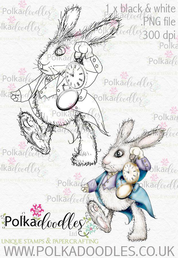 206 best Alice in Wonderland images on Pinterest | Wonderland, Alice ...