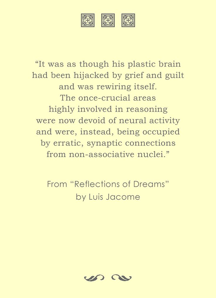 """It was as though his plastic brain had been hijacked by grief and guilt..."" From ""Reflections of Dreams"" by Luis Jacome, available at Amazon USA and worldwide and CreateSpace estore."