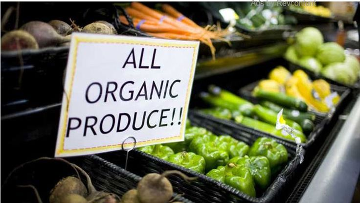 Bhutan announced its plan to become the world's first 100% organic nation in 2013, but it now has some competition. That's right, Denmark's government announced its plan to become Earth's first 100% organic nation – and it has a solid plan of accomplishing that feat. According to OrganicVeganEarth, the Scandinavian...More