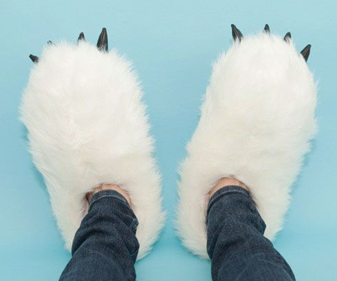 heated yeti slippers...NEED
